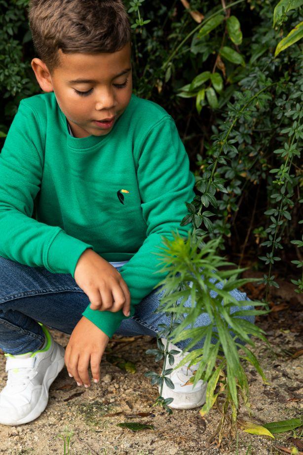 Kiddo - Sweater Green - Tucan